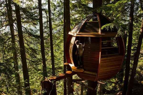 हेमलोफ्ट ट्रीहउस  - 26 साल की उम्र में रिटायर होने के बाद सॉफ्टवेयर डिवैल्पर जोएल एलन ने पेड़ पर इस घर को बनाया है।