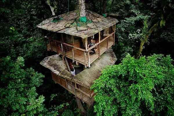 फिनका बैलाविस्टा ट्रीहाउस - यह पेड़ कोस्टारिका में पर्यावरण के अनुकूल बनाया गया है। यह ट्री हाउस कम्युनिटी का एक हिस्सा है।