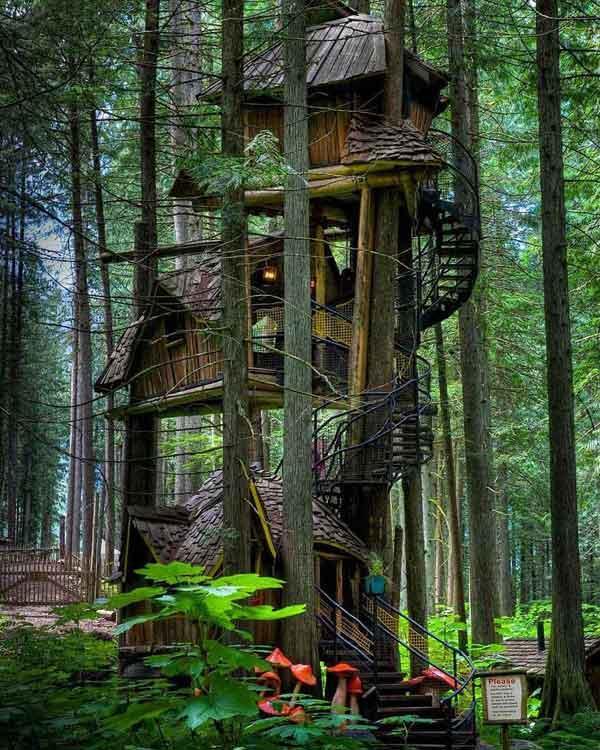 तीन मंजिल ट्रीहाउस - इस ट्रीहाउस को कनाडा में सबसे बड़ा पेड़ घर कहा जाता है।