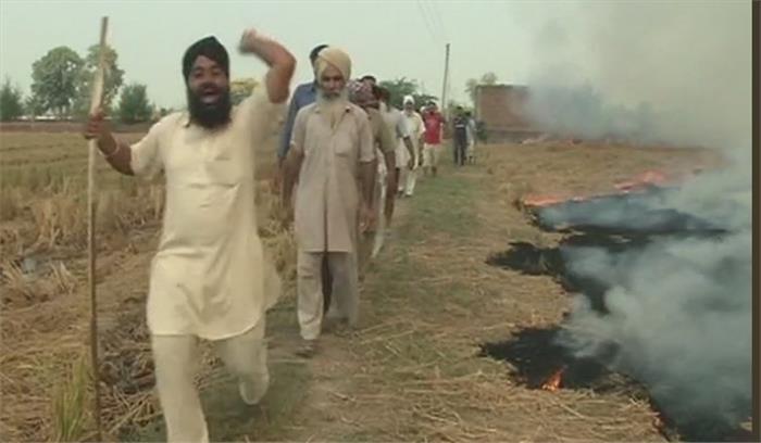 सुप्रीम कोर्ट के आदेश के बावजूद पंजाब में किसानों ने जलाई पराली, कहा-शौक नहीं हमारी मजबूरी
