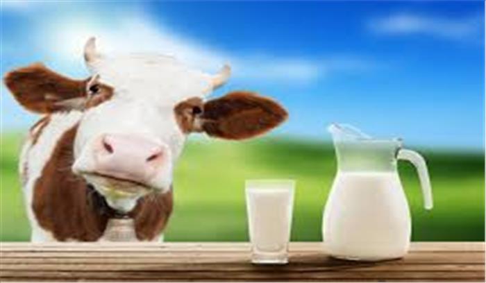 जानलेवा कैंसर से भी निजात दिलाएगा गाय का दूध, खूब पिएं और बीमारी को कहें बाय-बाय