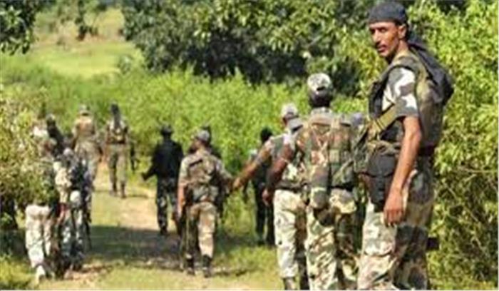 दंतेवाड़ा में सुरक्षाबलों ने 8 नक्सलियों को किया गिरफ्तार, 303 राइफल जब्त