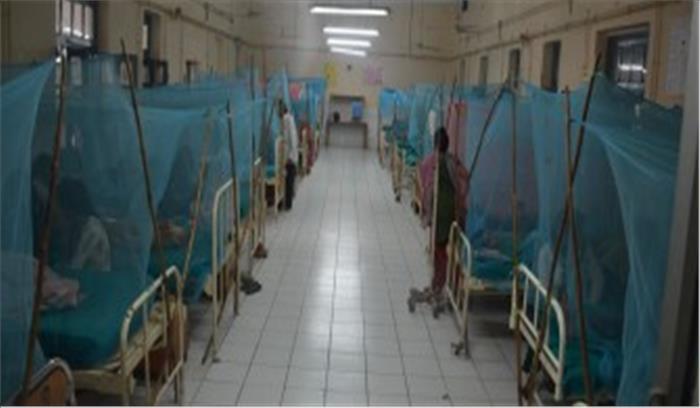 राज्य में डेंगू पर नियंत्रण के विभागीय दावे हुए फुस्स, दून में ही इसके मरीजों की संख्या पहुंची 100 के करीब
