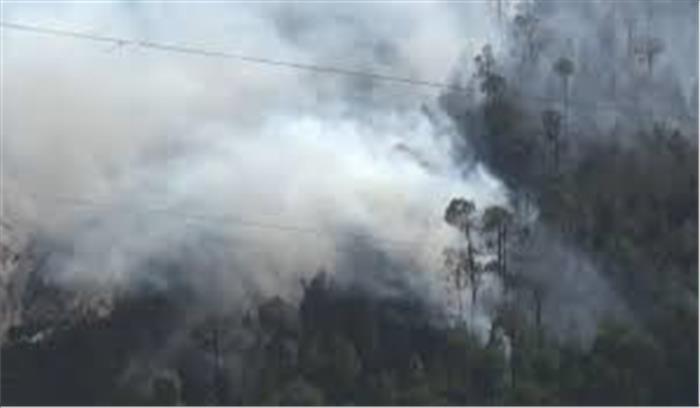 बर्फबारी के बाद अब धधका पहाड़ , उत्तरकाशी के नौगांव और हरिद्वार के बुग्गावाला के जंगलों में आग