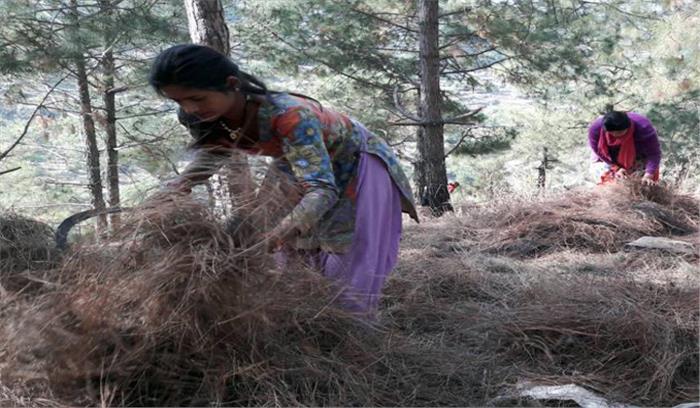 पहाड़ के पलायन रोकने को हरित कौशल विकास योजना शुरू, युवाओं को कई प्रशिक्षण देकर स्वरोजगार पैदा करने की कोशिश