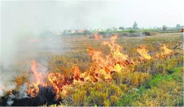 खेतों में पराली जलाने वाले हो जाएं सावधान, अब कानूनी कार्रवाई के साथ लगेगा जुर्माना