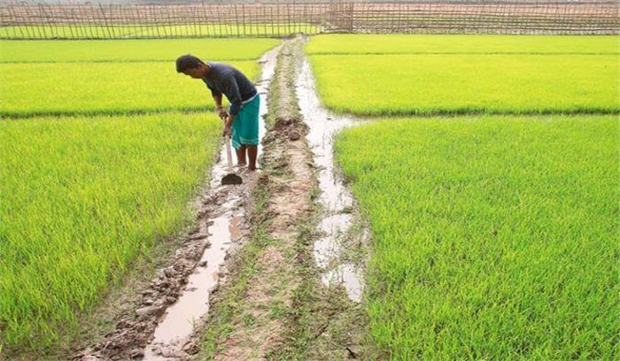 किसानों की फसल बीमा रकम डकारने वाले शाखा प्रबंधक हुए गिरफ्तार, भेजा गया जेल