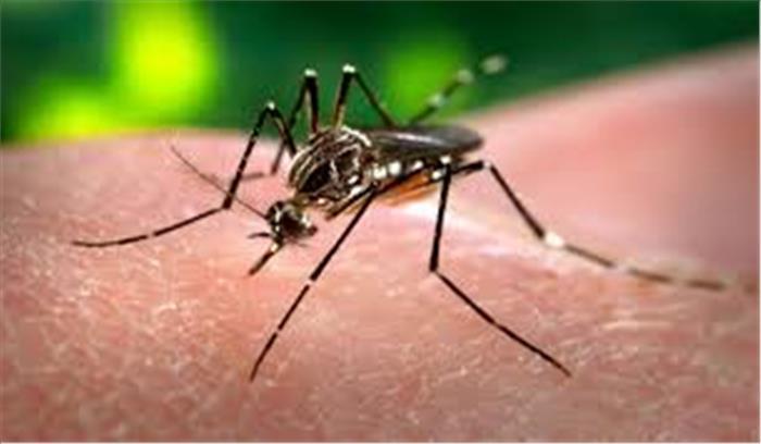 इन प्राकृतिक उपायों को अपनाएं और मलेरिया-चिकनगुनिया को दूर भगाएं