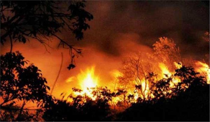 अर्द्धकुमारी के जंगलों में लगी आग,श्राइन बोर्ड और वन विभाग आग बुझाने में जुटी, यात्रा पर कोई असर नहीं