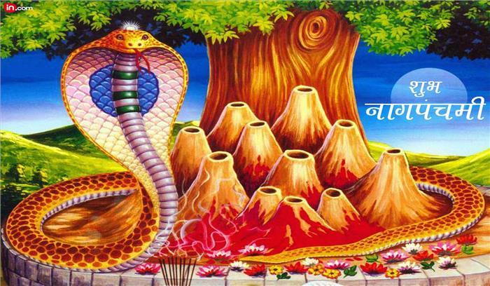 नाग पंचमी आज : क्यों मनाया जाता है यह त्योहार, इस शुभ मुहूर्त में करें पूजा—अर्चना
