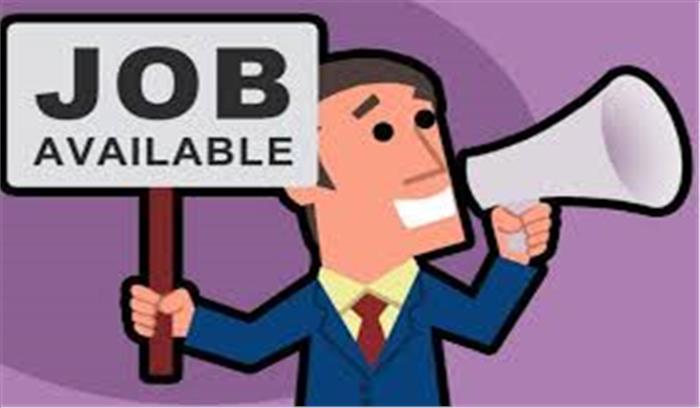 12 वीं पास के लिए सरकारी नौकरी का मौका, जल्द करें आवेदन