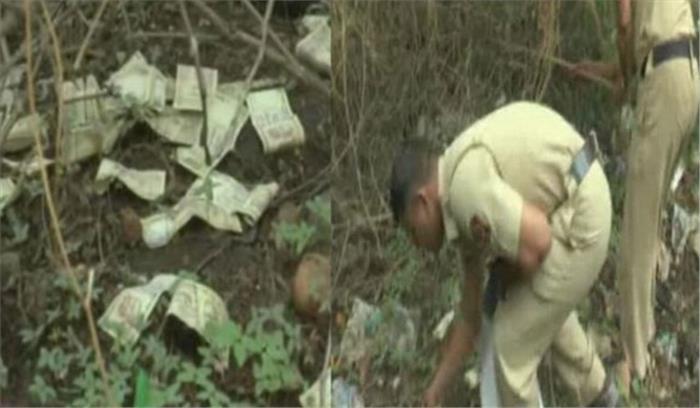 औरंगाबाद में पेड़ पर लाखों रुपये के नोट लटके देख जनता हैरान-पुलिस परेशान, रकम जब्त कर मालिक की तलाश शुरू