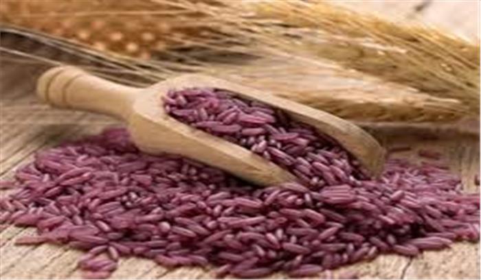 खाएं 'चीनी' पर्पल राइस और कैंसर, हृदयरोग और डाइबिटीज से पाएं निजात