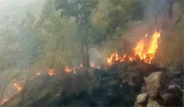 तमिलनाडु के जंगलों में लगी भीषण आग, 4 छात्रों की मौत, वायुसेना कर रही मदद