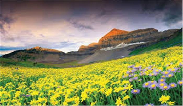 पर्यटकों के लिए 1 जून से खुल रही है फूलों की घाटी , 6 ट्रैप कैमरों से रखी जाएगी तस्करों पर नजर