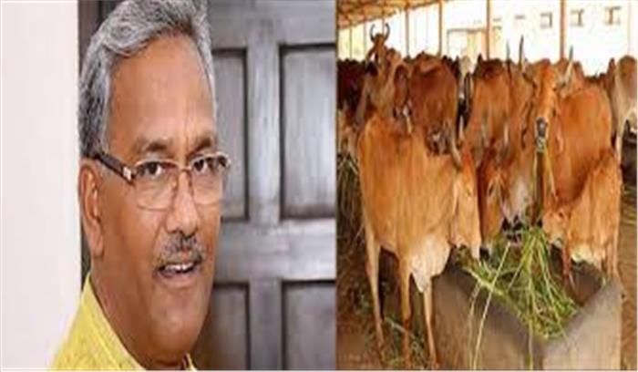 उत्तराखंड में गाय को मिला राष्ट्रमाता का दर्जा, विधानसभा में सर्वसम्मति से प्रस्ताव हुआ पास