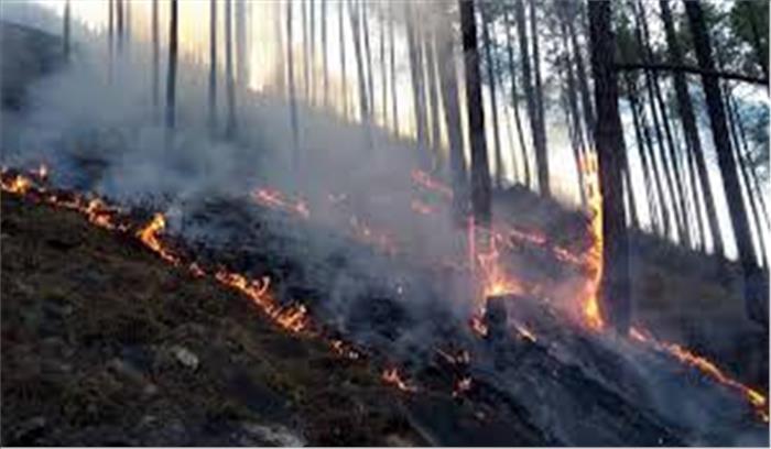 गढ़वाल-कुमांऊ मंडल के जंगलों में धधकी आग से बढ़ी आफत , मां पूर्णागिरी धाम की पहाड़ी तक फैली आग